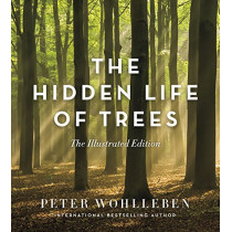 The Hidden Life of Trees: The Illustrated Edition by Peter Wohlleben, 9781771643481