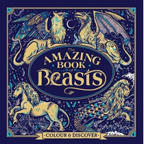 The Amazing Book of Beasts: Colour and Discover by Angela Rizza, 9781780555959