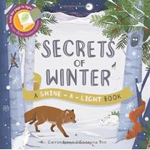 Shine a Light: Secrets of Winter: A shine-a-light book by Carron Brown, 9781782405191