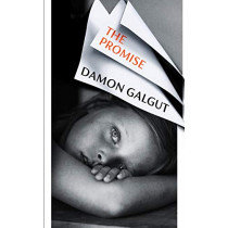 The Promise by Damon Galgut, 9781784744069
