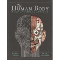 The Human Body: A Pop-Up Guide to Anatomy by Richard Walker, 9781787410589