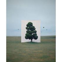 New Art, New Markets by Iain Robertson, 9781848222175