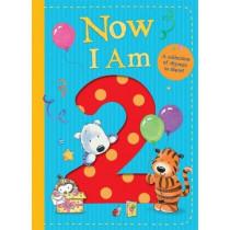Now I Am 2 by Rachel Baines, 9781848699311