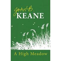 A High Meadow by John B. Keane, 9781856350907