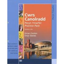 Cwrs Canolradd: Pecyn Ymarfer (De / South) by Eirian Conlon, 9781860855887