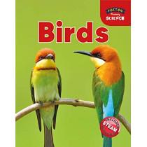 Foxton Primary Science: Birds (Key Stage 1 Science) by Nichola Tyrrell, 9781911481935