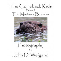 The Comeback Kids, Book 5, The Martinez Beavers by John D Weigand, 9781935118022
