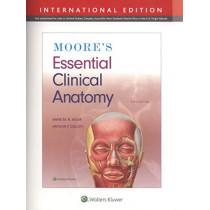 Moore's Essential Clinical Anatomy by Anne M. R. Agur, 9781975114435