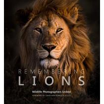 Remembering Lions by Margot Raggett, 9781999643317