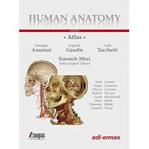 Human Anatomy - Multimedial Interactive Atlas: Volume 2 by Giuseppe Anastasi, 9788870515893