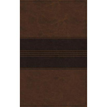 NRSV, Thinline Bible, Leathersoft, Brown, Comfort Print by Zondervan, 9780310452355