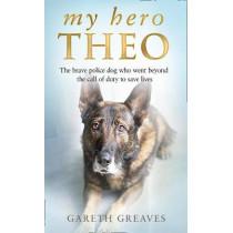 My Hero Theo by Gareth Greaves, 9780008385224