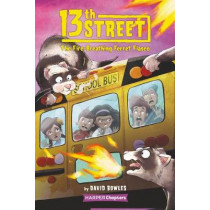 13th Street #2: The Fire-Breathing Ferret Fiasco by David Bowles, 9780062947826
