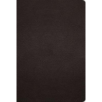 ESV Large Print Compact Bible, 9781433572012