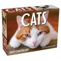 Cats 2021 Mini Day-To-Day Calendar by Andrews McMeel Publishing, 9781524857004